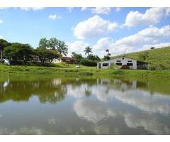 fazenda 100 alqueires  á 260 km de São Paulo